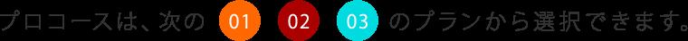 プロコースは、01 02 03 のプランから選択できます。